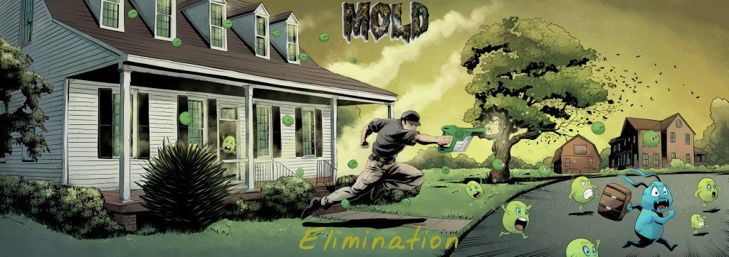 Attic Mold Eliminator Banner